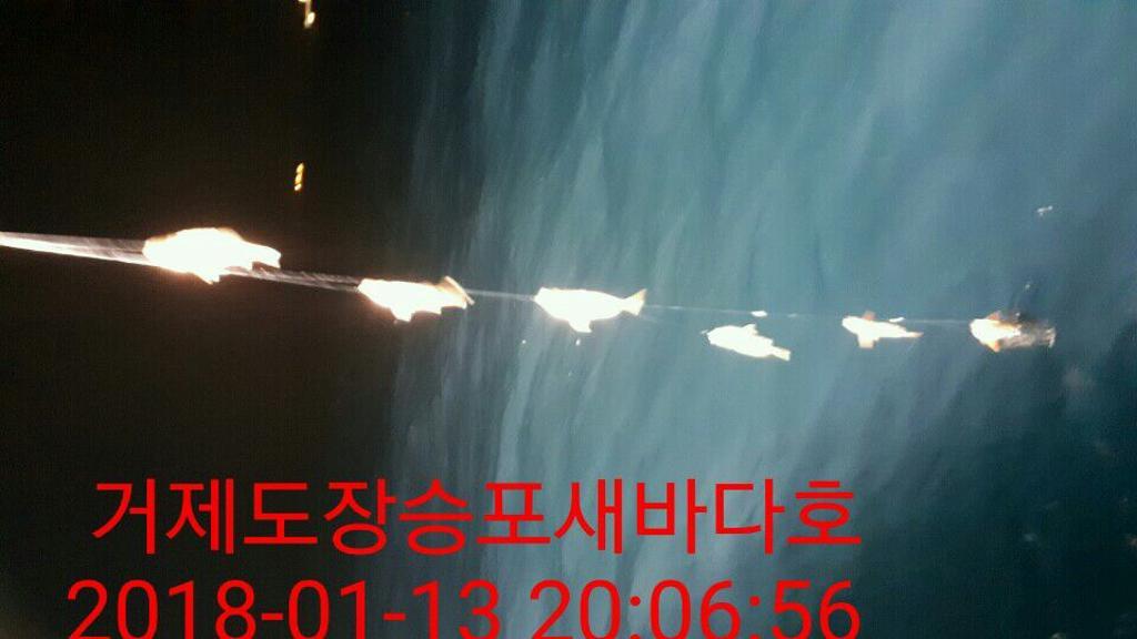 F0279453O2.jpg
