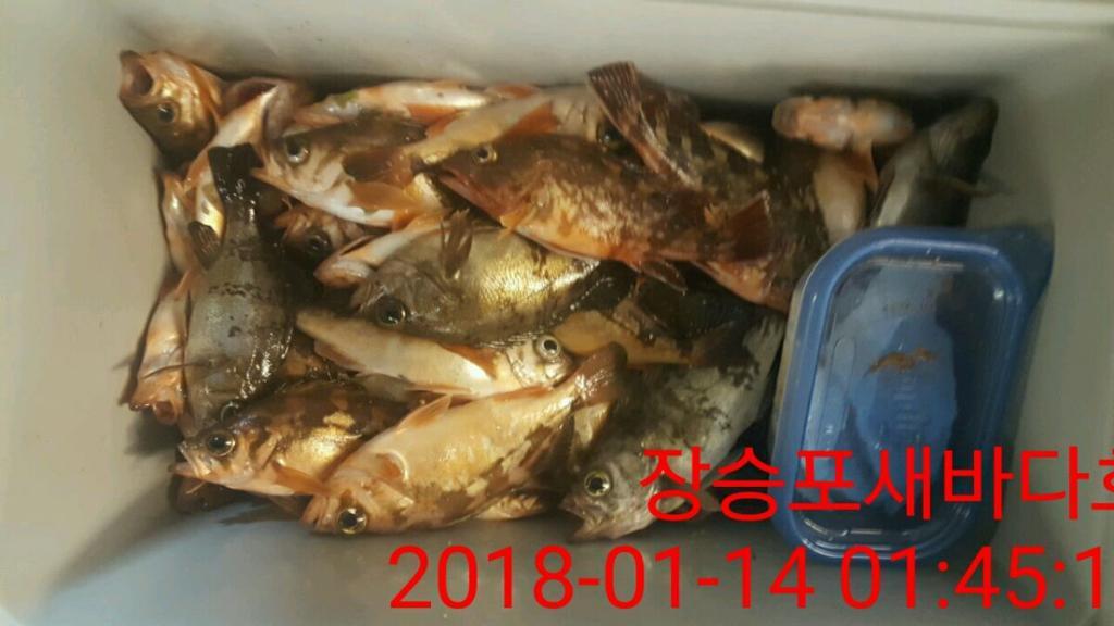 F0279466XI.jpg