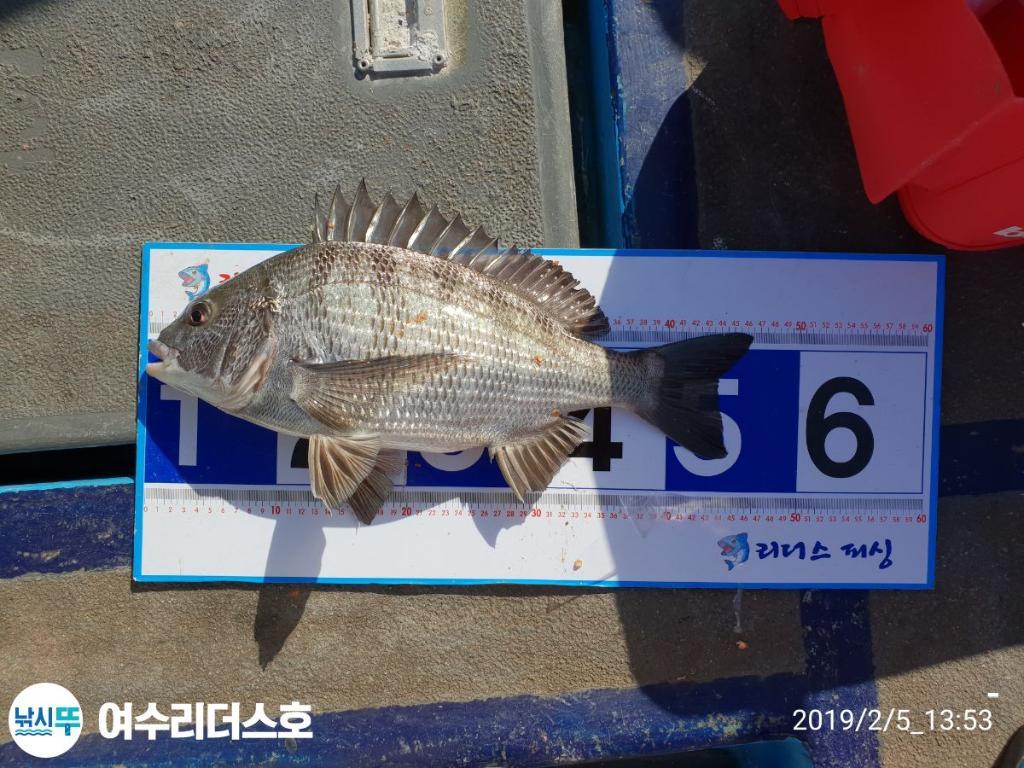 F0525939KM.jpg