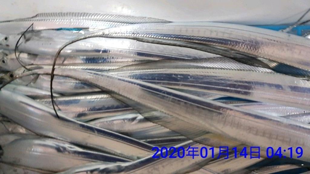 F08489455C.jpg