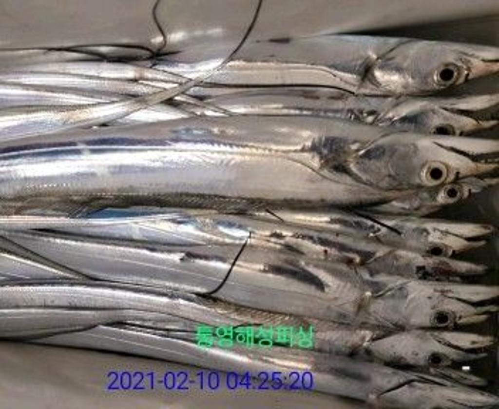 F1226234EP.jpg